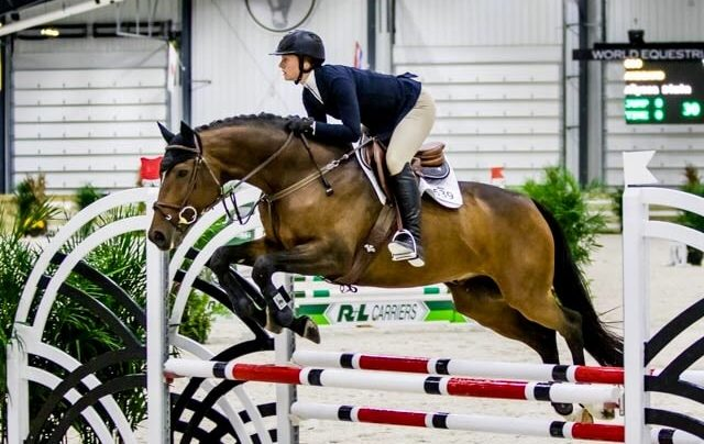jumping horse show