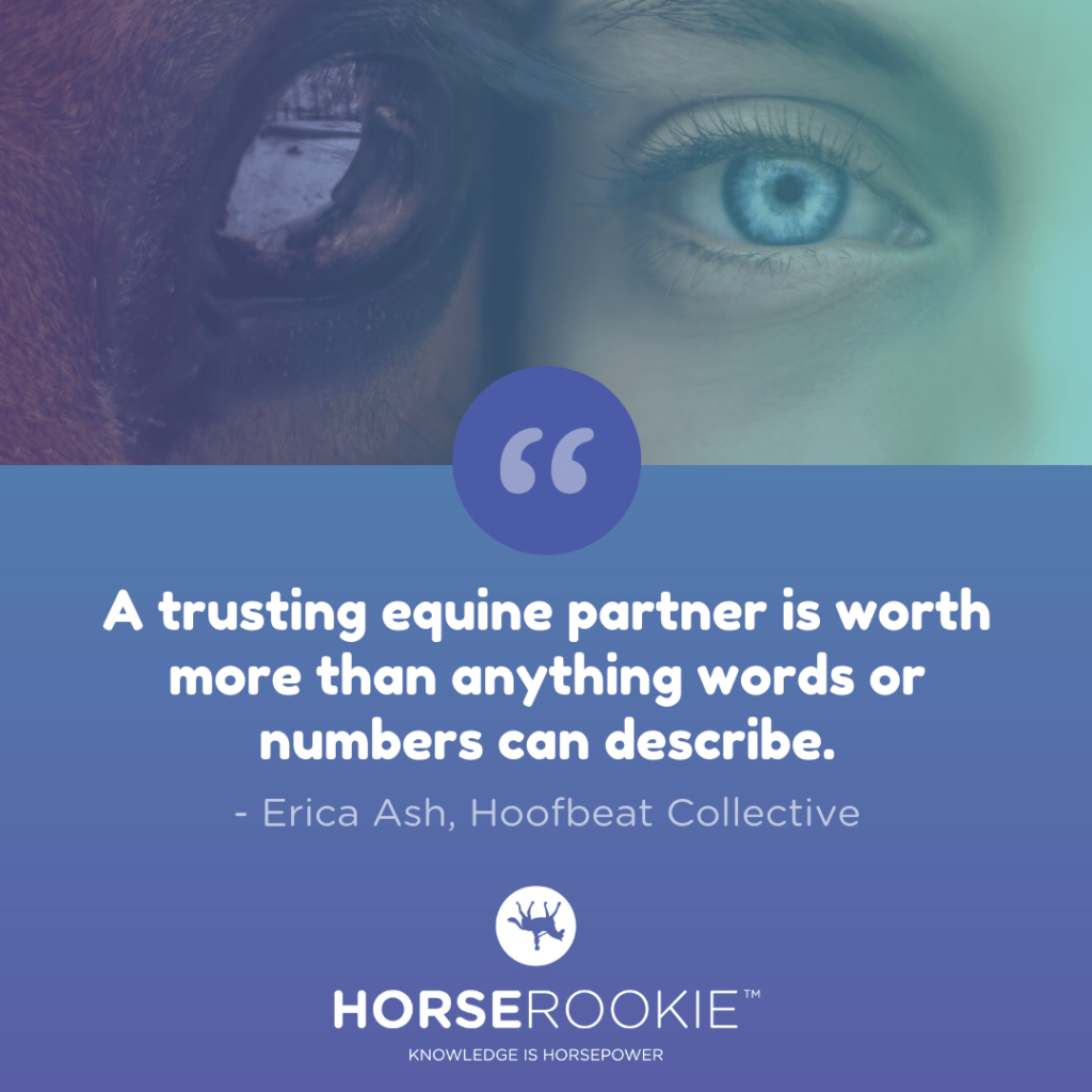 Inspirational Horse Quote About Trust