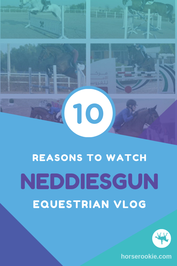 10 Reasons to Love Neddiesgun Vlog