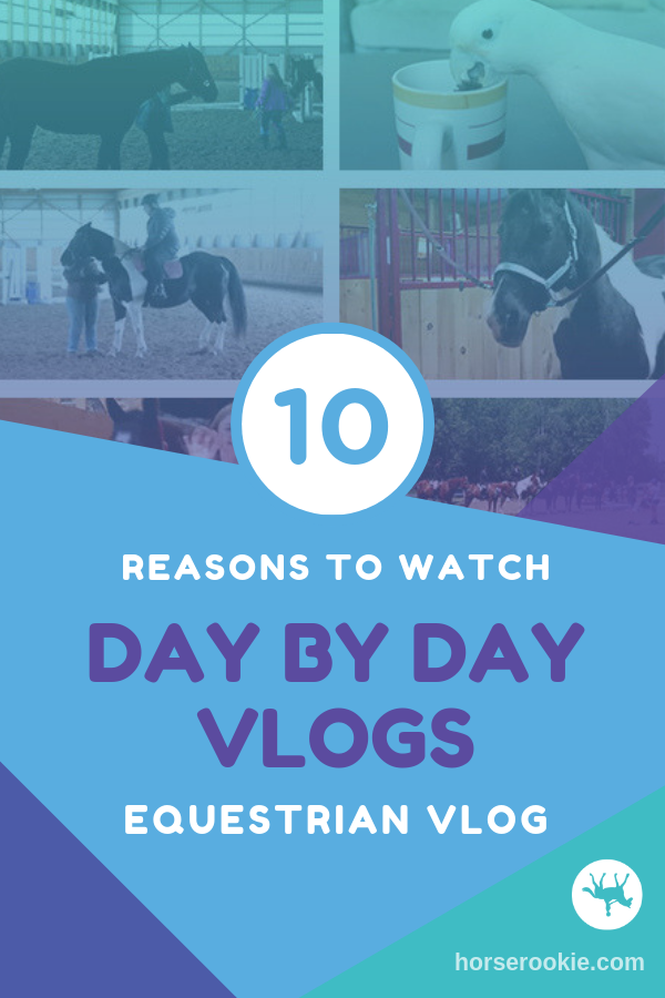 10 Reasons to Love Day by Day Vlogs