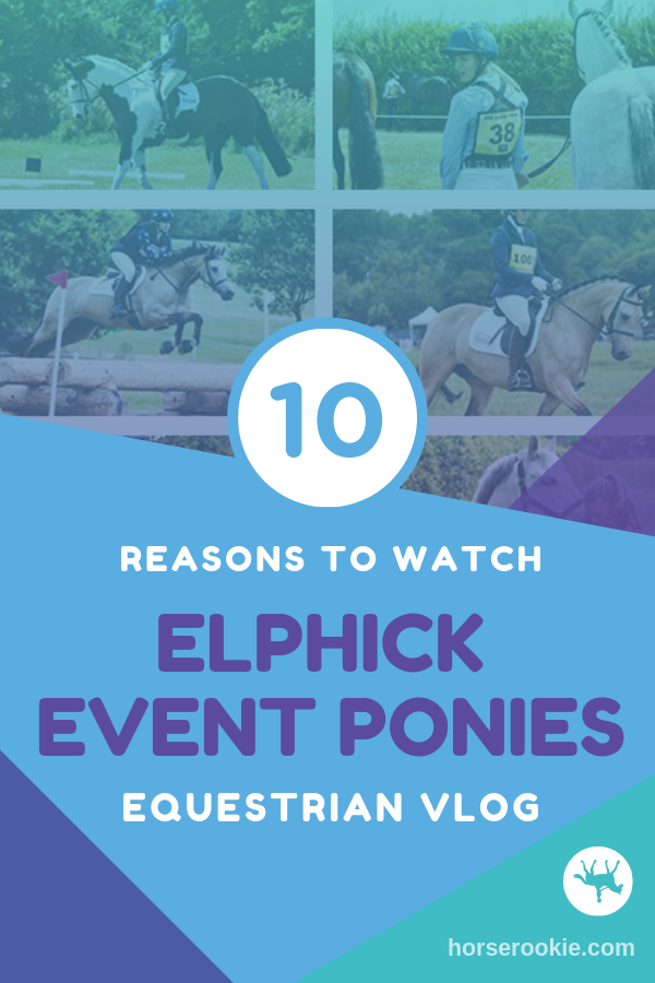 10 Reasons to Watch Elphick Event Ponies Vlog