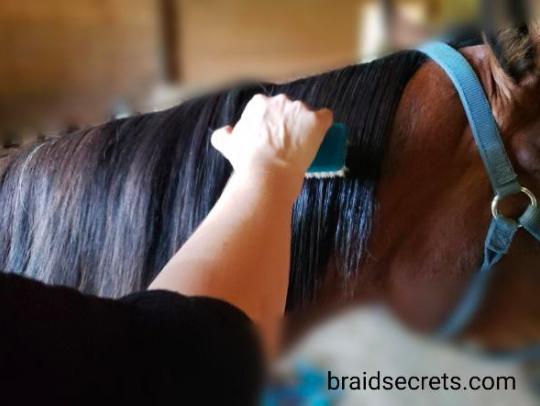 Horse mane running braid