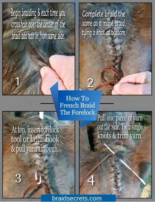 running braid mane 6