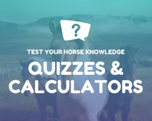 Horse Quizzes and Calculators