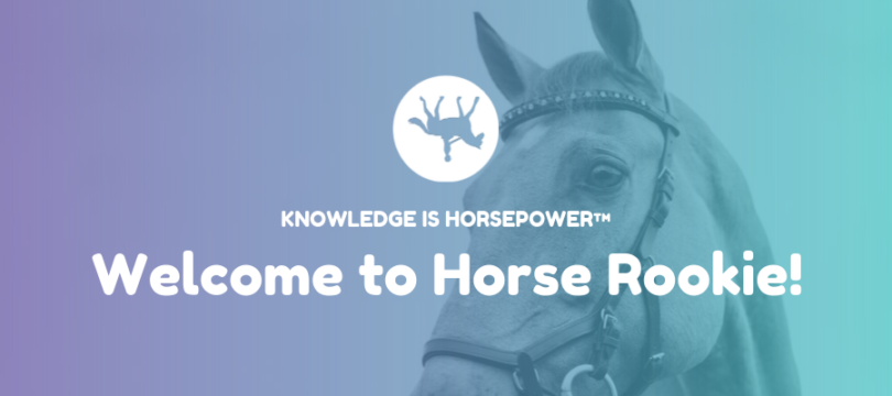 Welcome to Horse Rookie