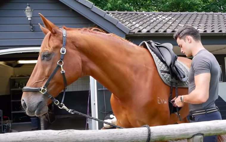 Matt Harnacke Horse Chase