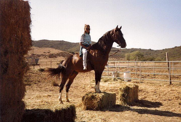 trick riding on a horse