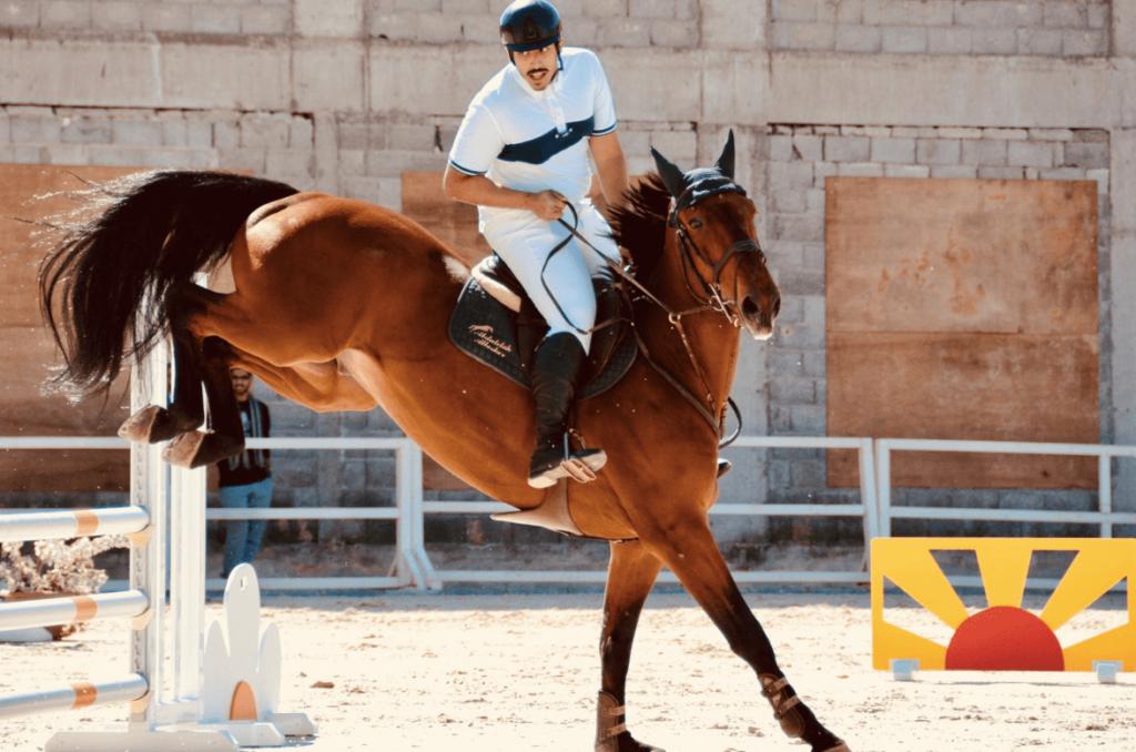 grand prix jumping horse