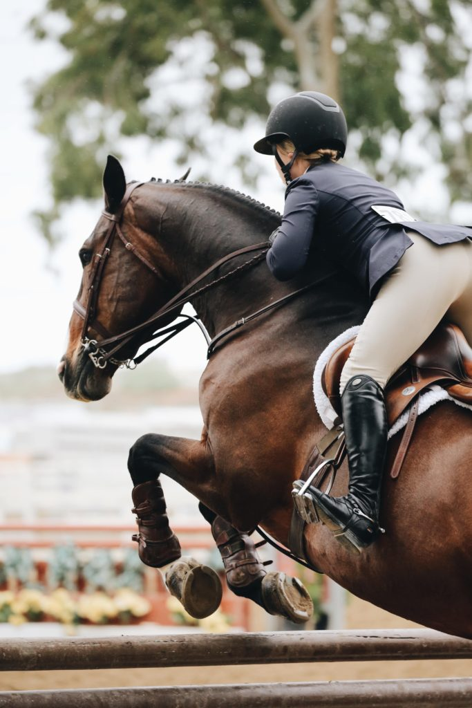 correct horse jumping position