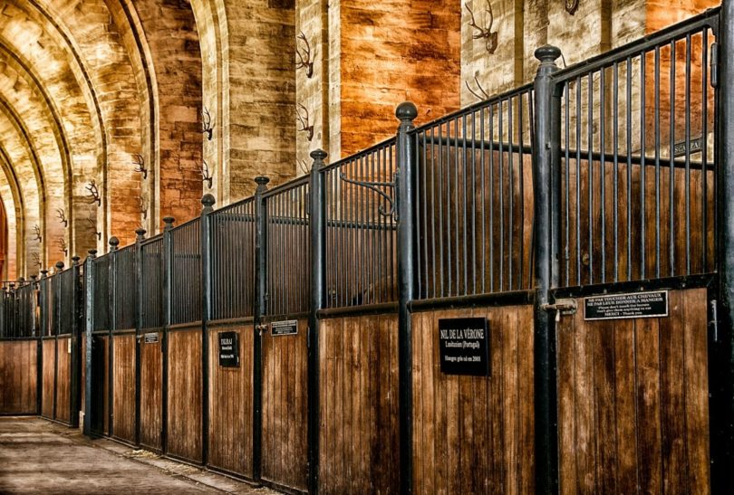 horse stall size