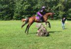 horse rider jump position