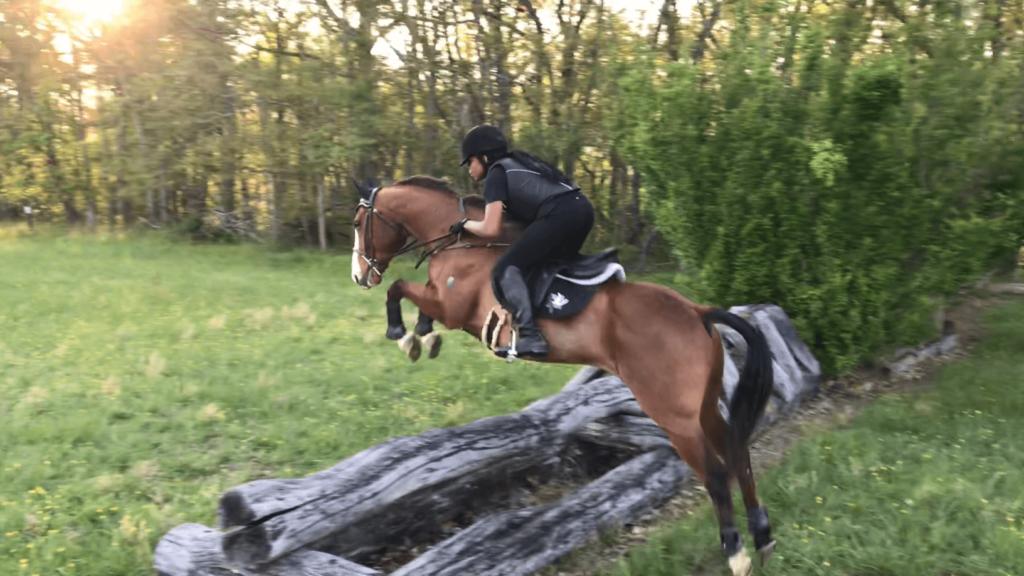 folding jumping horse