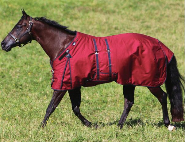Armorflex-challenge-horse-blanket