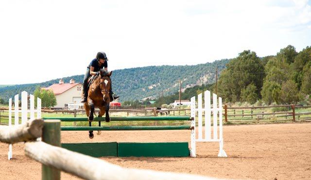 green horse jump