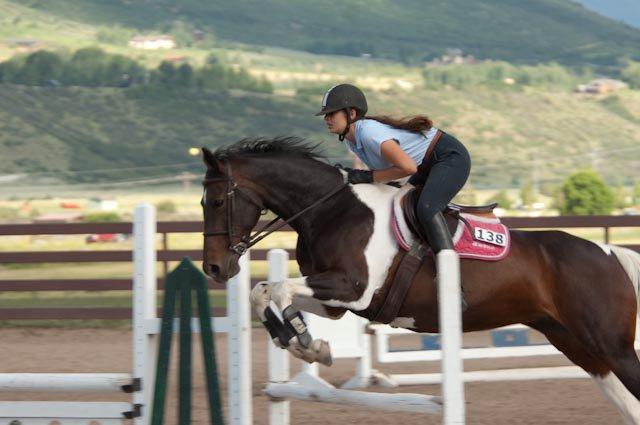 horse human bond