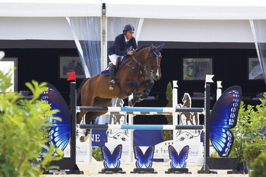 horse jump knees tucked
