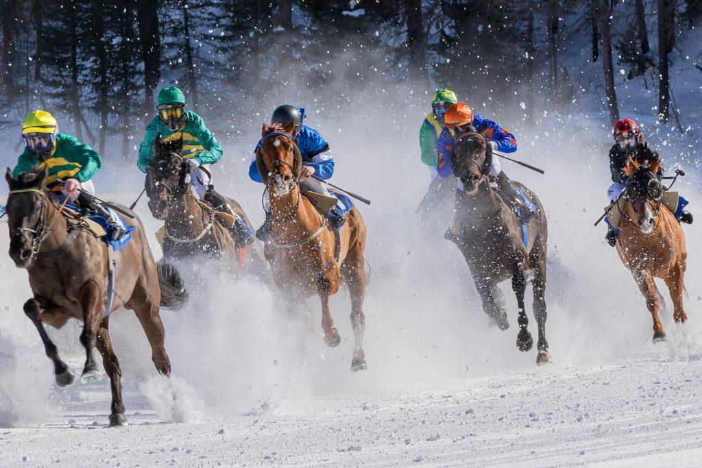 horse race photography