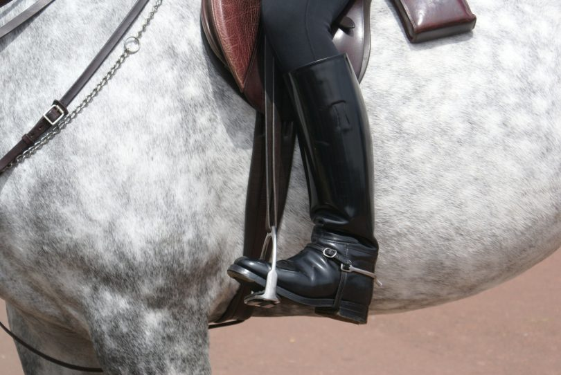 comfortable tall riding boot
