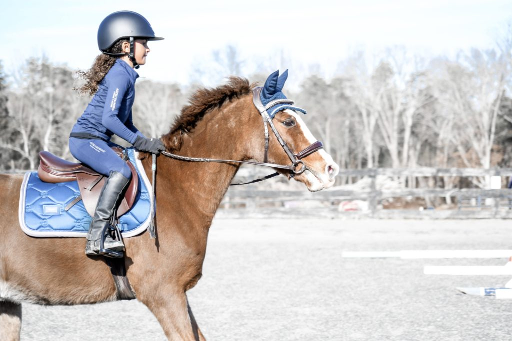 horse jumping approach