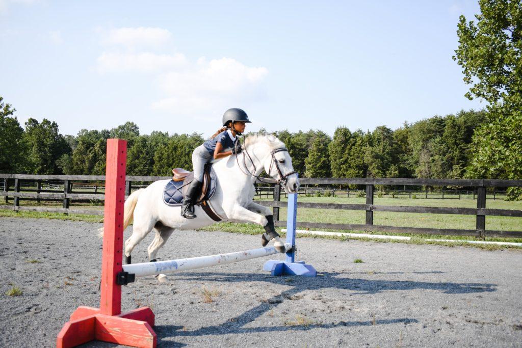 horse rider jumping