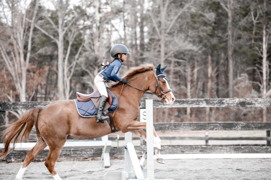 jumping horse with kids