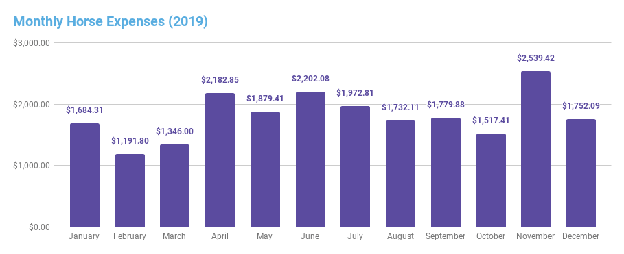 2019 horse expenses by month