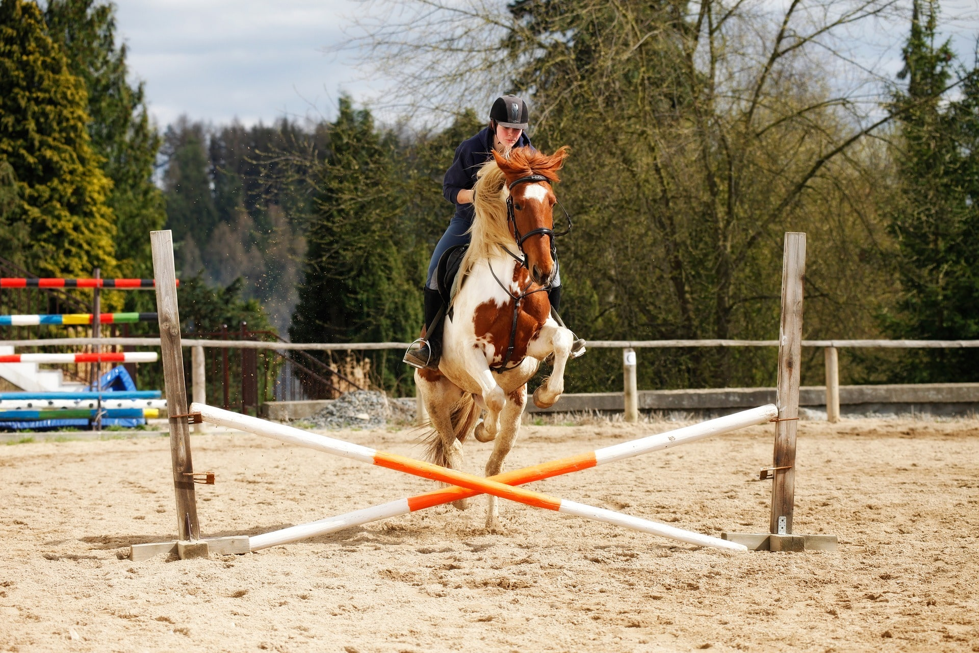 12 Pointers For Jumping Crossrails With Confidence