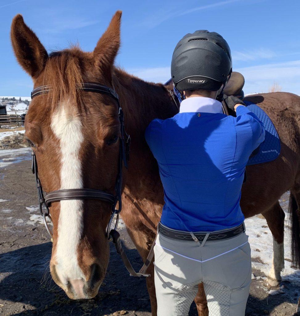 for horses misti breeches