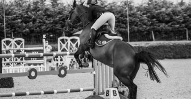 horse jumping fences black and white