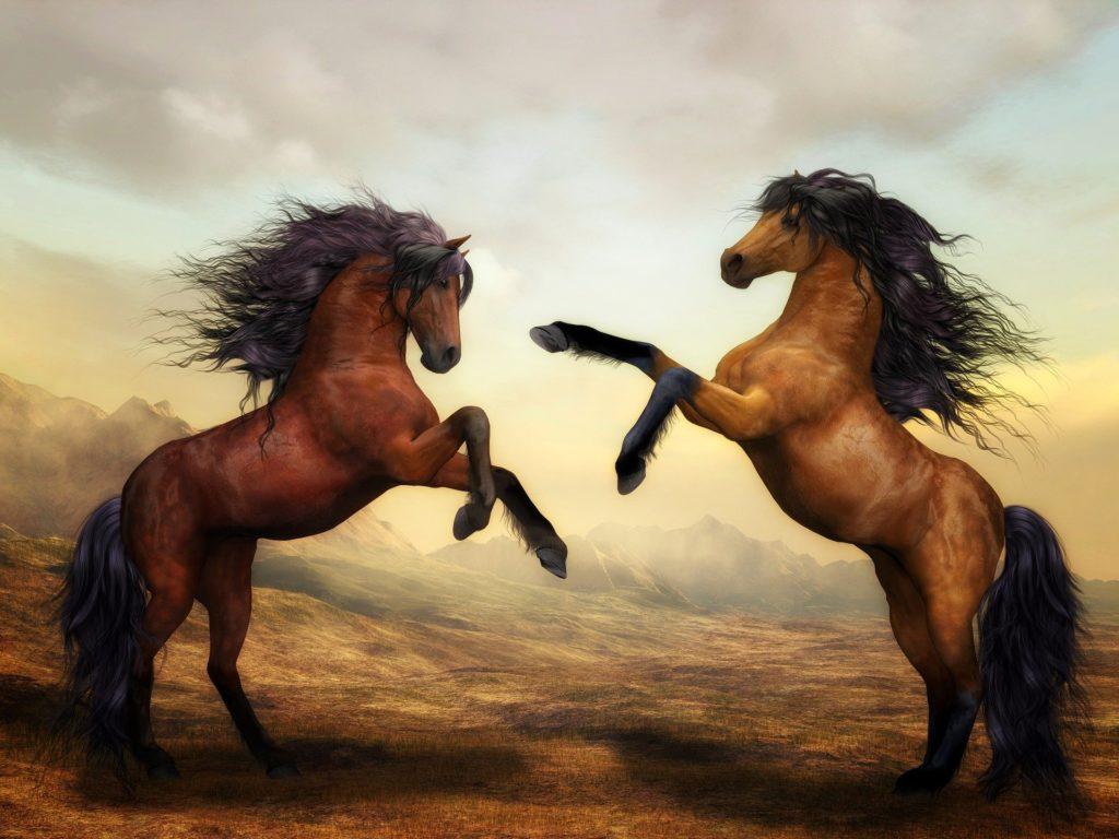 horse evolution artwork