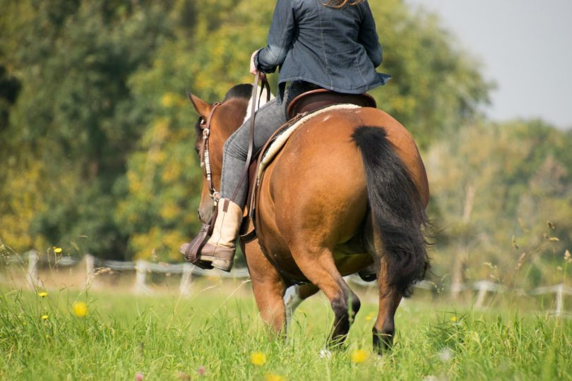cowgirl boot gal riding horse
