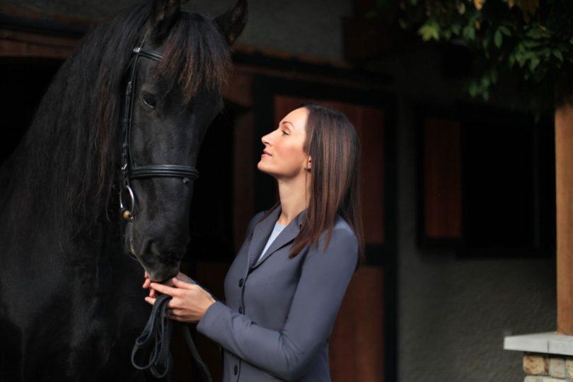 asmar equestrian black horse