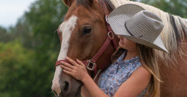 horse-camp-love-tail-movie