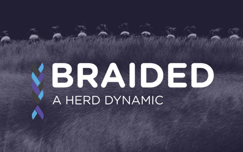 Braided Horse Rookie Program