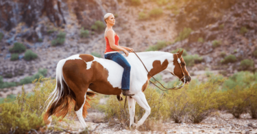 Carly Kade In the Reins Horse Author