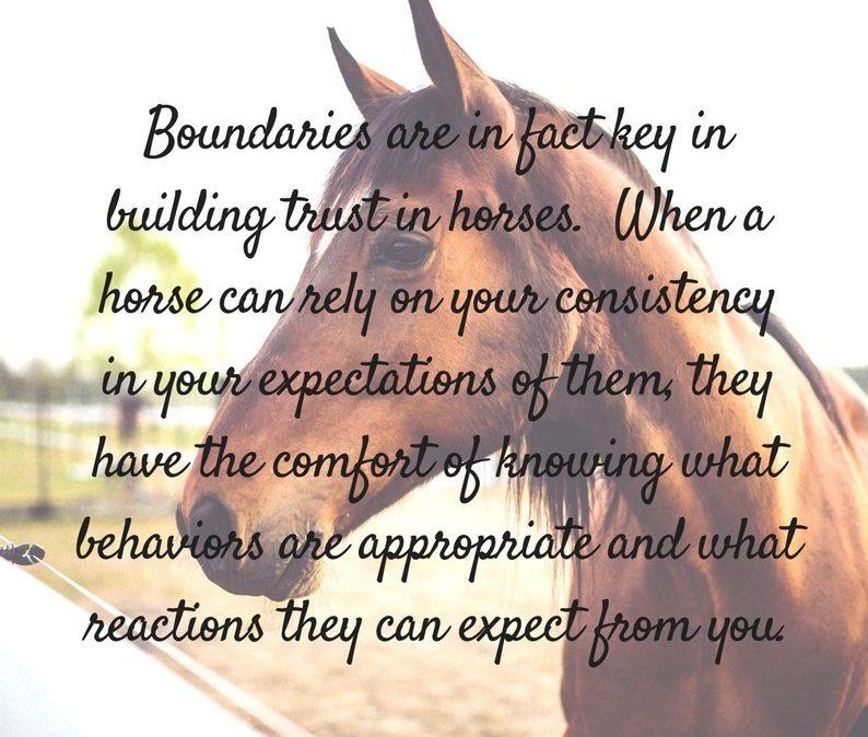 horse boundaries quote