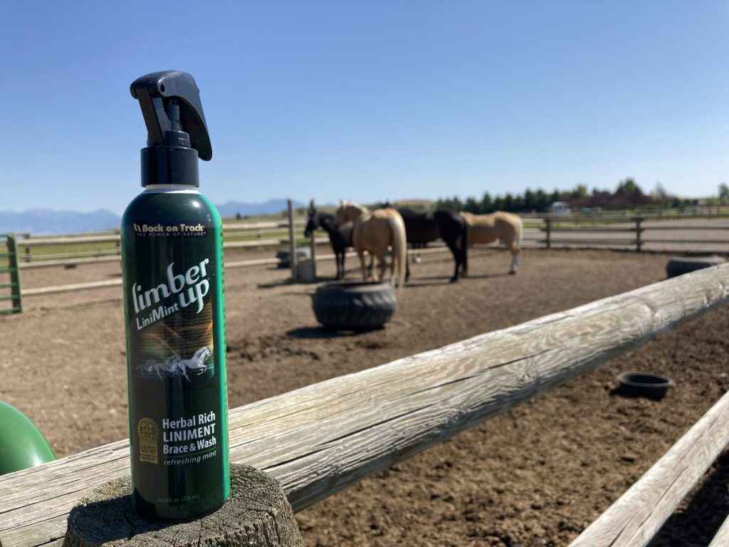 horse liniment on fence