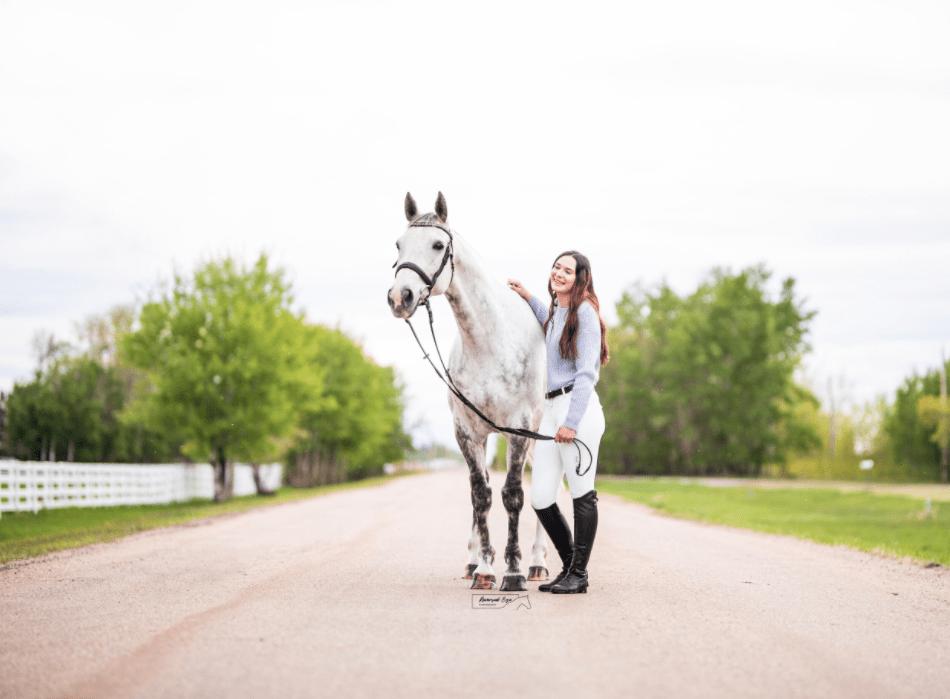 grey horse photo shoot