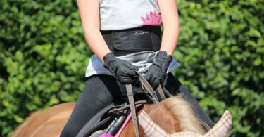 horse riding weight loss
