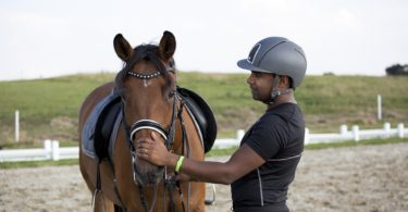 black horse rider with bay mare