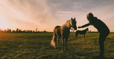 horse riding nervous girl