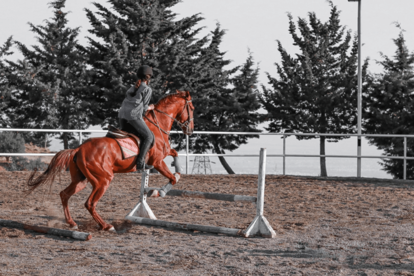 training tips for horse rider