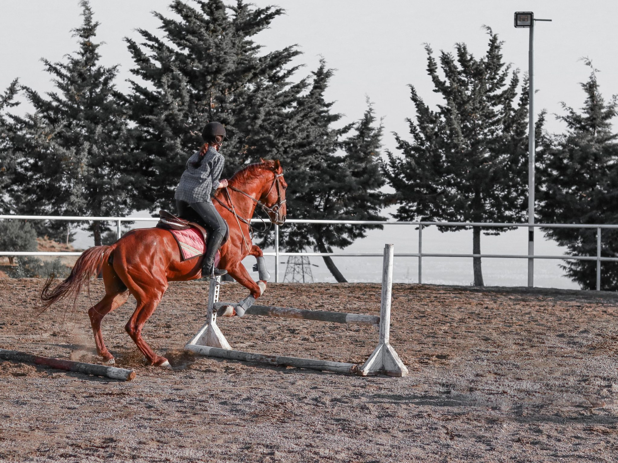 5 Bits Of Advice For The Intermediate Horse Rider