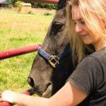 lindsey rains horse