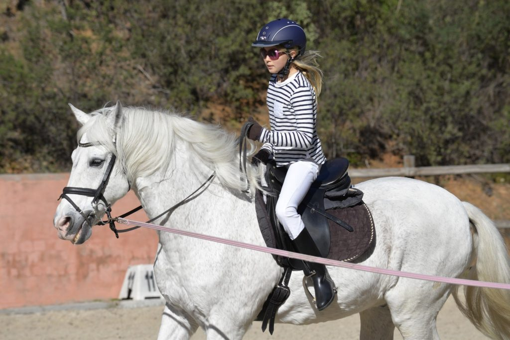 young girl horse riding lesson