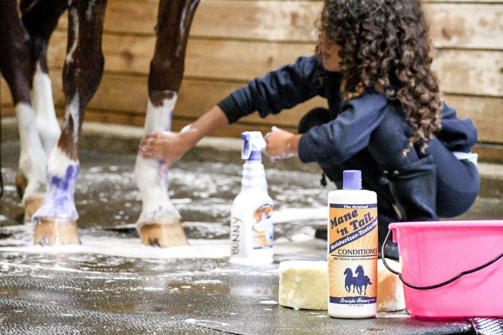 child bathing horse