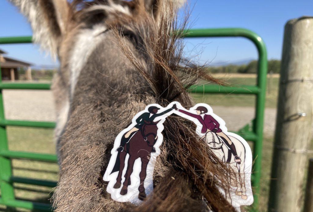 horse riding diversity sticker on donkey