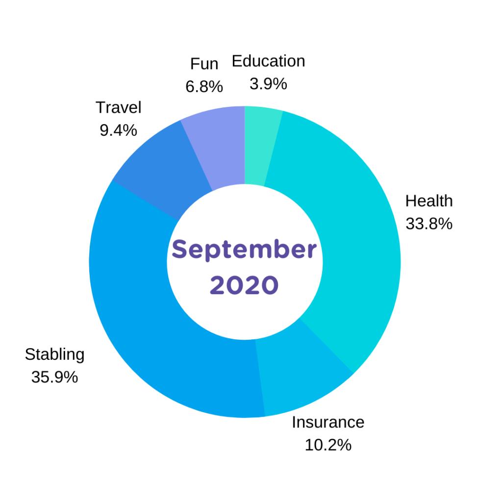 september 2020 expense report