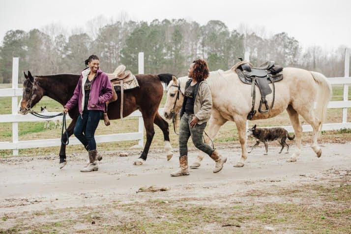 abriana johnson leading horses