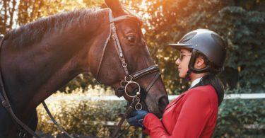 horse riding helmet